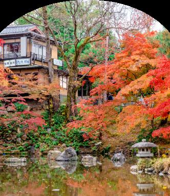 円山公園スマホ用画像