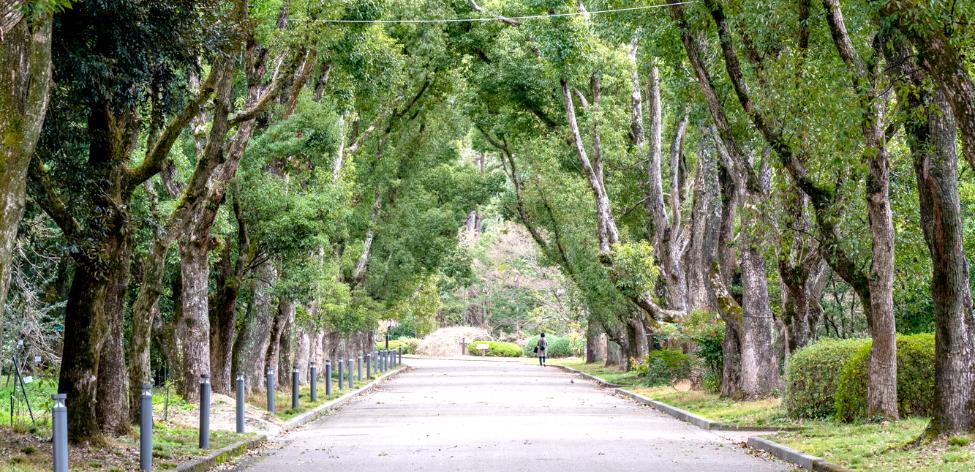 自然公園メイン画像